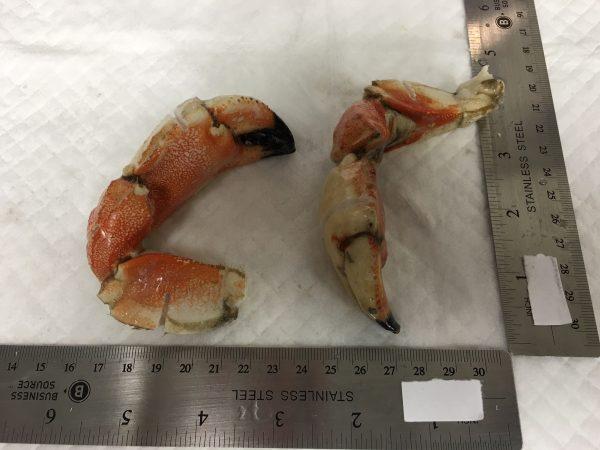 Crab - Jonah Clusters