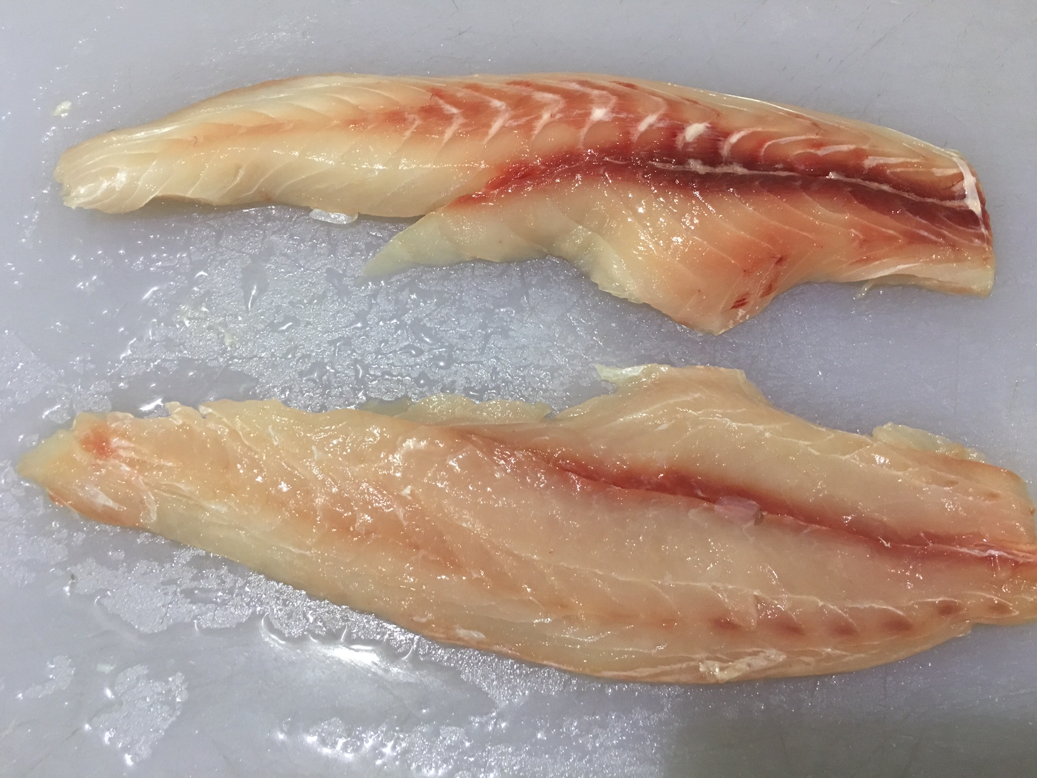 Drum skin on fillets piazza seafood wholesale for Drum fish recipes