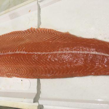 Salmon - Fillet Skin on