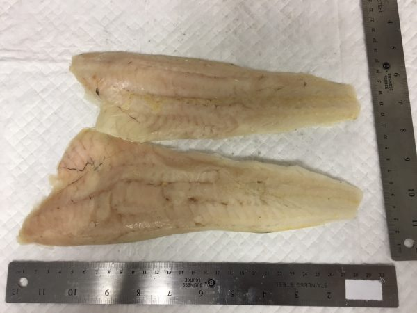 Whiting - Fillets Skinless