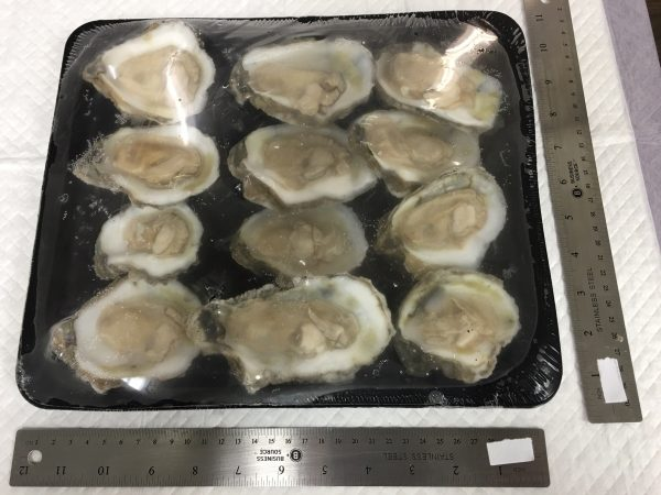 Oysters - Meat Half Shell