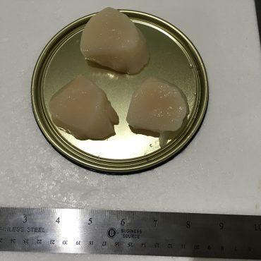 Scallops - Fresh