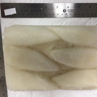 Squid - Tubes Large